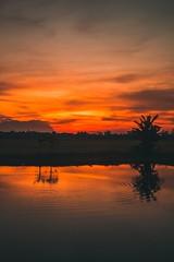 Where I regain my sanity... (ibtihajtafheem) Tags: sunset sunsets sunsetporn sunsetphotography sunsetlovers sunsetlover sunsetlongexposure sunray sunrise sunriseporn sunbeam sun nature travel water sky ruralsky skyporn cloudsky cloud cloudearth earthcolors earth flickr canon canon1200d photography