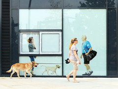 woman with dog (nika.vero) Tags: commercial woman dog animals street streetlife city citysnap hamburg advertising menwithdogs gassigehen