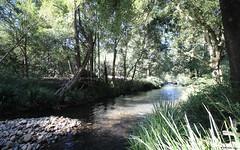 444 Upper Rollands Plains Road, Upper Rollands Plains NSW
