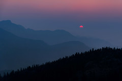 Orbiting Orange Sorbet (Carl's Captures) Tags: sunrise dawn daybreak rockymountainnationalpark rmnp manyparkscurveoverlook frontrange rockymountains colorado continentaldivide nature outdoors hazy smoke smoky forestfires summer horizon morning bluehour pink orange layers landscape atmosphere atmospheric moody mood semisphere journey memories awe inspiration exploring experiencing discovering beauty serenity trees flora silhouettes minimalism trailridgeroad route34 haze hemisphere orangesherbet orangesorbet blueberrypie halfscoop nikond7500 sigma18300 photoshopbyfehlfarben thanksbinexo yextcolorado