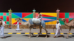 Khareef Camels (Packing-Light) Tags: middleeast oman omani salalah khareef festival party carnival night attractions people culture festivities celebration monsoon camel rainbow