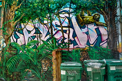 Urban Jungle (Leaning Ladder) Tags: philadelphia pa pennsylvania graffiti streetart street mural leaningladder canon 7d 7dmkii