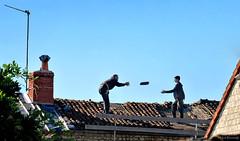 France: Les Bruères, a new roof (Henk Binnendijk) Tags: france loire loirevalley indreetloire centrevaldeloire lesbruères latoursaintgelin roof work people dakpannen rooftiles touraine