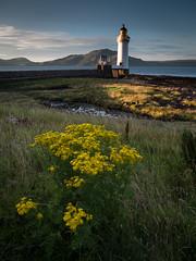 lumière du soir (objet introuvable) Tags: scotland écosse holidays vacances lighthouse phare mull light lumière sea mer colors yellow landscape paysage nature sky couleurs