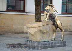 180830-5362 (Dariusz Noskowicz) Tags: lublin