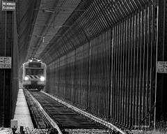 Ponte de ferro - Rio Mondego (verridário) Tags: comboio trem monocromatico noir black mono monochrome white negro preto branco nero bianco rail train ponte bridge chemindefer railway caminhodeferro ute sony bw