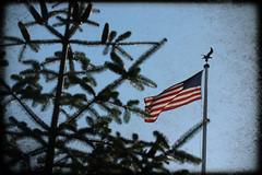American military memorial-Belgium (bernard.joassin@gmail.com) Tags: drapeau us cimetière militaire ardenne bulge