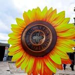 Sculpture: You Are a Sunflower, Skopje thumbnail