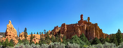 Red Canyon (Hendricks_NY) Tags: 2018 utah panoramic redcanyon vacation nikond7200 brycecanyon unitedstates birdseye autostitch sky canyon red rocks rock desert southwest trees sagebrush day clear dixie national forest outdoors nature mountain sandstone editingcameratechniques
