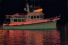 78 True North- (Christmas Ships Parade) Tags: 2017 christmasshipsparade columbiariver december holiday portlandoregon ships willametteriver boat captain captains lights tradition portland oregon usa
