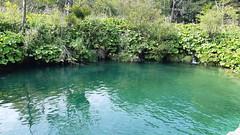 20180818_104750 (rmassart) Tags: m08 y2018 croatia plitvicka jezera plitvickajezera plitvichka lakes