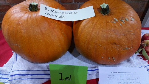 Most peculiar vegetable