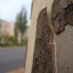 Halbnackt auf der Straße thumbnail