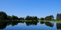 And not a cloud was in the sky... (joanneclifford) Tags: xf1855mm fujifilmxt20 trees reflections bluesky ottawa andrewhaydonpark