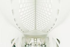 MAM. (t-a-i) Tags: 2018 28mm a7rii a7rmkii a7r2 mam milwaukee milwaukeeartmuseum sel28f20 santiagocalatrava sony sonya7rii sonyilce7rm2 sonyα7rii us usa architecture α7rii