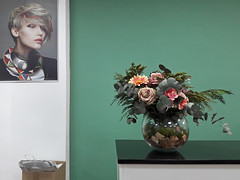 hair salon (maximorgana) Tags: hair salon flower fake planter box carrier green wall mostrador