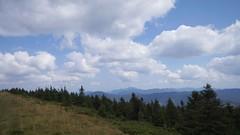 În depărtare munții Nemira