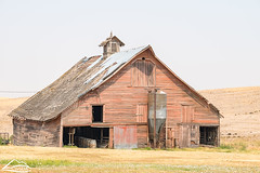 Barn in Walla Walla County (Washington State Department of Agriculture) Tags: august summer wsdagov wallawallacounty washingtonstatedepartmentofagriculture barn washington washingtonstate wine wsda