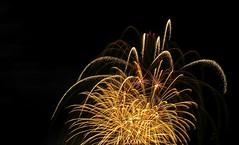 Flammende Sterne Feuerwerk aus Südkorea. Scharnhausen music Fireworks International. (eagle1effi) Tags: flammende sterne feuerwerk aus südkorea scharnhausen music fireworks international flammendesterne ostfildern regionstuttgart scharnhauserpark eagle1effi sx60 8km entfernt