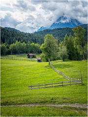 green is not just a color ... ( 1 ) (miriam ulivi - I have not.Internet.connection) Tags: miriamulivi nikond7200 austria seefeldintirol prati steccato meadows fence verde green alberi trees abeti firs malghe nuvole clouds monte mountain nature