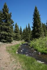 trail (rovingmagpie) Tags: utah fishlake umcreek creek blm summer2018 trail