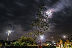 mood lighting (Paul Wrights Reserved) Tags: longexposure sky tree starburst lightburst light clouds skyscape cloudscape night nightphotography nighttime moon mood moonlight
