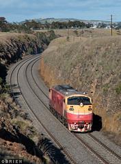For Store (Dobpics O'Brien) Tags: a66 locomotive engine diesel rail railway railways train victorian victoria vr vline sunbury bendigo light