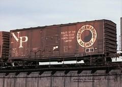 NP  9122, 40' box, Allentown, PA. 12-16-1978 (jackdk) Tags: railroad railway railroadcar boxcar freightcar np northernpacific fallenflag 40 40footboxcar allentown np9122