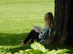 A young woman immersed in a book at Major's Hill Park in Ottawa, Ontario (Ullysses) Tags: majorshillpark ottawa ontario canada summer été relaxing reading lowertown bookworm