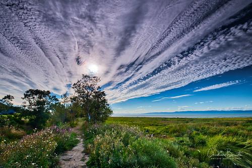 Un chemin fleuri y mène/A flowery path leads to it/En blommig väg leder till den