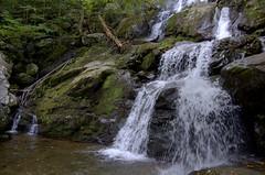 Dark Hollow Falls (swampt01) Tags: water waterfalls wildliffe wildplaces shenandoah nationalpark nature nikon scenic leaves landscape leaf mountains morninglight mountain hiking