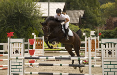 DSC_6692_2 (emina.knezevic) Tags: showjumping horses equestrian equestrianphotographer showphotographer nikon nikonphotographer nikond3200