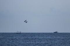 IMG_0580 Sa Rapita, Mallorca (Fernando Sa Rapita) Tags: baleares canon canoneos eos200d mallorca sarapita tamron tamron150600 aircraft azul blue cielo sky teleobjetivo ultraligero ultralight sea mar boat barcos