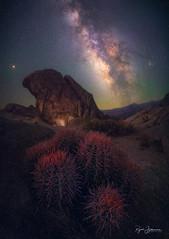 Vyraj (Rajesh Jyothiswaran) Tags: alabamahills barrel cactus california cottontop desert milkyway sierra sky astronomy astrophotography astroscape meteor night stars starscape