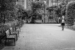 """Emptiness"" (Terje Helberg Photography) Tags: bw blackandwhite bnw candid citylife cityscape citywalk mono monochrome outdoor outside people street streetphotography streetlife urban black white photography park bench avenue boulevard sidewalk alley pedestrian walkway village paving stone"