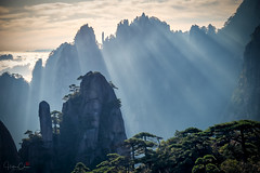 Above the Clouds (Hilton Chen) Tags: autumn goddessofmercypillar huangshannationalpark dwarfpines summer sunrise anhuiprovince seaofclouds granitepeaks china yellowmountains huangshancity anhui cn