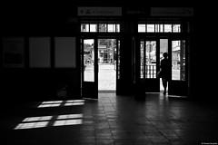 Chorzów 2018 (Tomek Szczyrba) Tags: bw noir monochrome silhouette sylwetka character postać światło light drzwi door człowiek kobieta people woman miasto town dworzec wejście entrance station city street photo streetphoto odbicia reflection cień shadow streetphotography fotografiauliczna