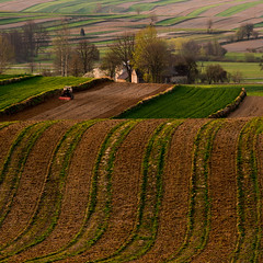 A long time ago in Roztocze (fotoswietokrzyskie) Tags: tree road landscape grass field nikon d800 nikond800 nikkor 80400mm f4556 g ed vr farmlands spring