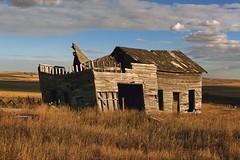 Old and forgotten in Alberta. (Bernard Spragg) Tags: decay house lumix old broken canada alberta rural abondoned tumbledown soe