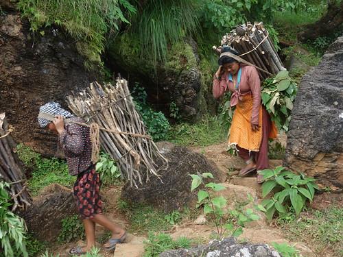 Sur le chemin du retour nous avons croisé des femmes portant du bois, cela paraissait difficile.