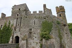 Le château de Pirou (philippeguillot21) Tags: châteaufort castel pirou manche cotentin normandie france europe rempart tour tower créneau pixelistes lerre canon castle
