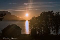 Midnightsun Ullsfjord North Norway.... =) (ullsfjordibilder) Tags: midnattsol midnightsun norway sun nature landscapephotography landscape seascape
