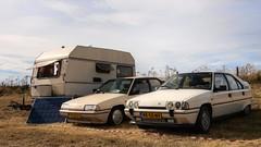 Kip Campine K370 / Citroën BX 19 TRI / GTi (Skylark92) Tags: citroën water forest boat sky grass gelderland maurik van eiland window windshield tree building car road citroen jaar 100 holland netherlands nederland vehicle kip campine k370 1980 onk origineel nederlands kenteken bx 19 tri u9 blanc cremant xr10rd 1989 gti k6 rk55nv meije 1987 0274wp