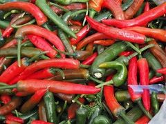 colorful fresh peppers (Kirlikedi) Tags: paprika ingredient chilli closeup cooking seasoning mexican vegetable spice hot chili spicy agriculture october sos background chilipepper cluster collection colored crushing dessert field filling food fresh green handle harvest healthy material materiel mixed natural organic pain pepper plant pointed production red salad stack texture tissue various vegetables vegetarian weed winter