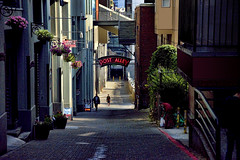 Post Alley (msuner48) Tags: d750 acr5 cs4 alley postalley people buildings flowers sign stairs steps cobblestones brick nikcollection topazlabs nikonafs24120mmf4ged