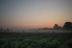 Morgendämmerung im Nebel (ANVOTO) Tags: landscape landschaft orte austria sonnenaufgang oberösterreich wels sunset nebel frog