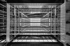 Lookup (Leipzig_trifft_Wien) Tags: denhaag provinzsüdholland niederlande nl architecture lookup lookingup wideangle building modern contemporary glass steel reflection mirror rectangle lines