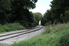 Old Tracks (Gene Ellison) Tags: rail tracks worn trees roadbed
