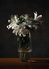 Lilies (tvdijk19) Tags: 04b color flowers bloemen lilies lily lelie lelies studio flash fujixt2 flits flitslicht flashlight nature stilllife stilleven soft fuji zacht lowkey softfocus boeket bloem