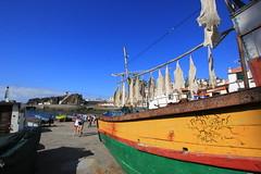Madeira 2017 (Fotodesaster55) Tags: madeira spanien insel landschaft sonne architektur bäume blumen markt fisch boote hafen stadt tourismus wolken grün schiffe kreuzfahrer
